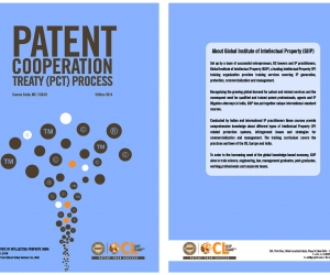 Patent Cooperation Treaty (PCT) Process